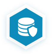 Data Security Icon